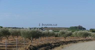 INVERLUZ, S.L. Finca Salida De Villablanca Villablanca HUELVA