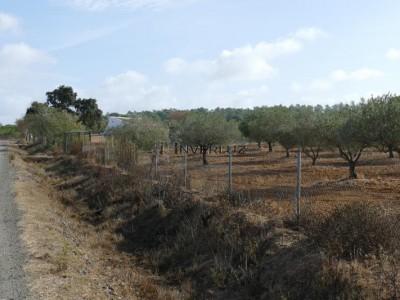 INVERLUZ, S.L. Finca Camino Rural Villablanca HUELVA