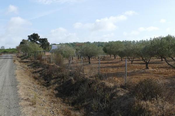 INVERLUZ, S.L. Venta Finca Camino Rural Villablanca HUELVA