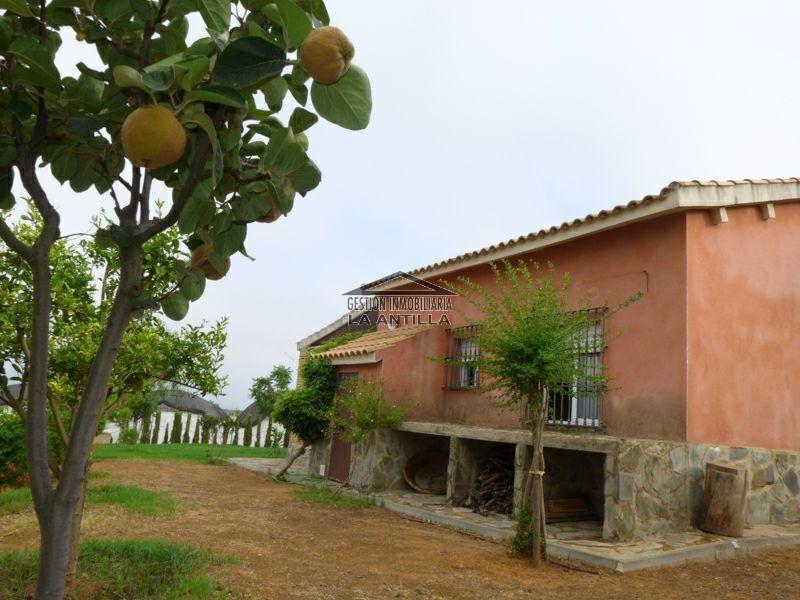Gestión Inmobiliaria La Antilla Terreno Lepe Lepe HUELVA